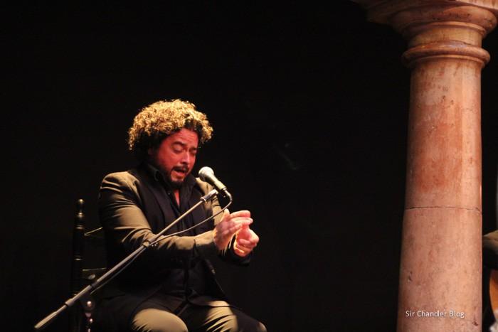flamenco-cantor