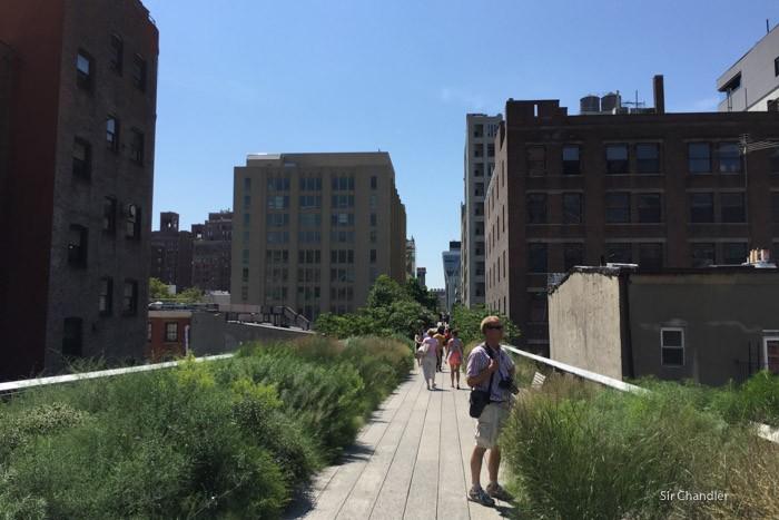 highline-new-york--5