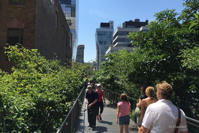 highline-new-york--9