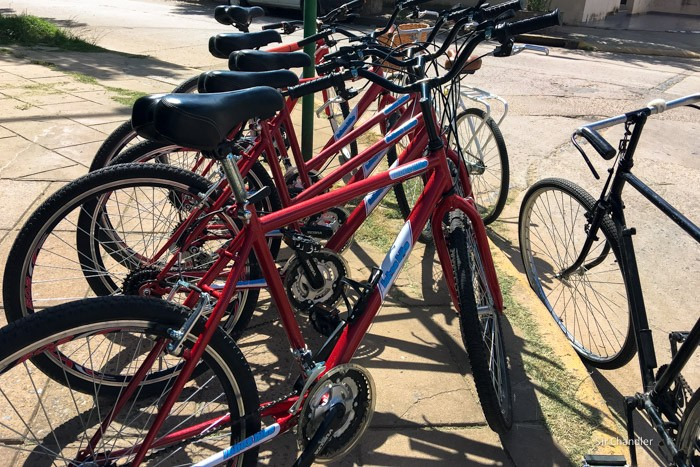 lobos-bicicletas