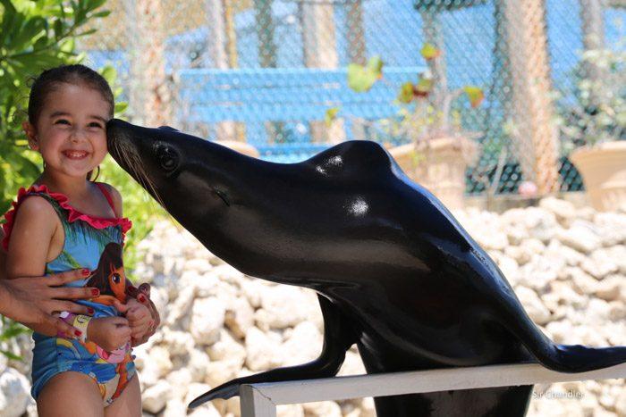 18-foca-blue-lagoon-island-5113