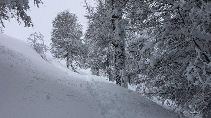 caminata-bayo-3401