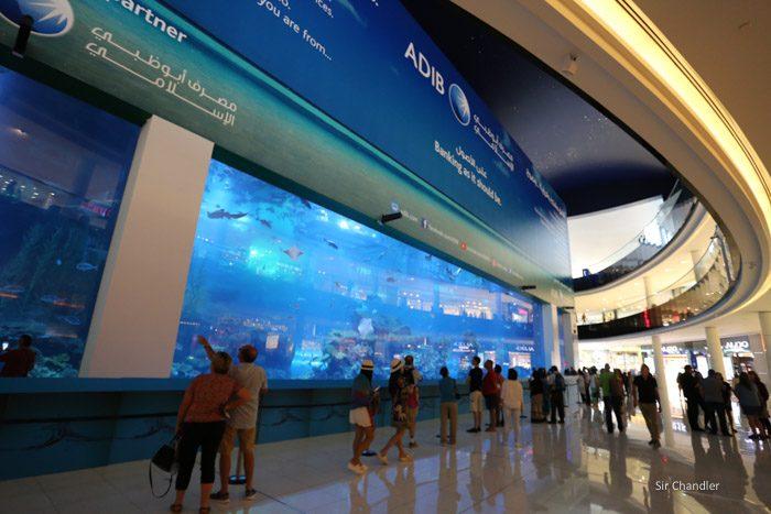 dubail-mall-shopping-0192