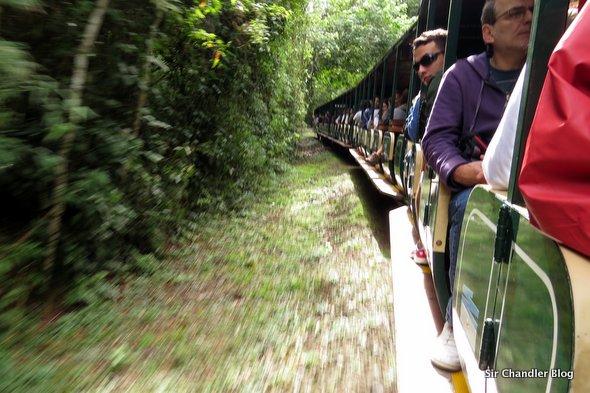 cataratas-trayecto-tren