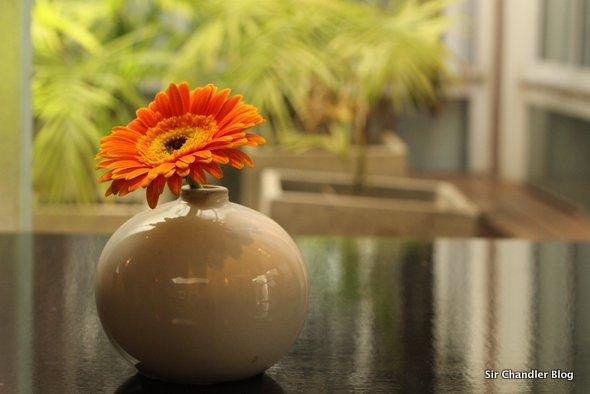 azur-real-flor
