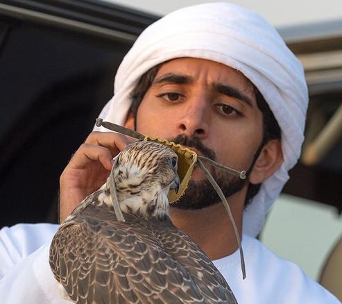 Fazza, o el príncipe árabe que reina en Instagram
