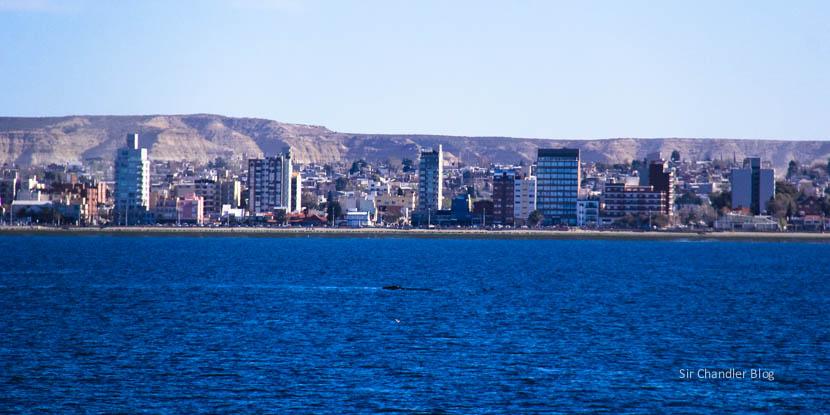 La gran predisposición al turismo de Puerto Madryn