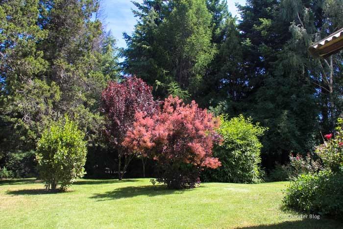 bariloche-casa-jardines