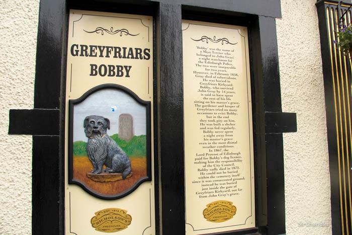 harry-potter-bobby