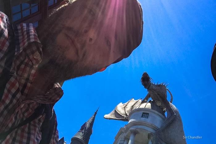 12-harry-potter-dragon-chandler