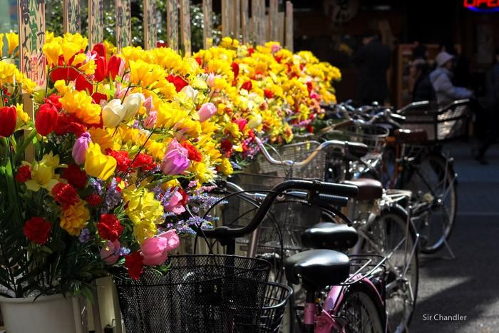 flores-plastico-japon-0189