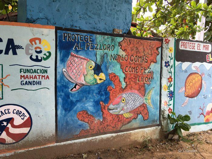 las-terrenas-dominicana-0371