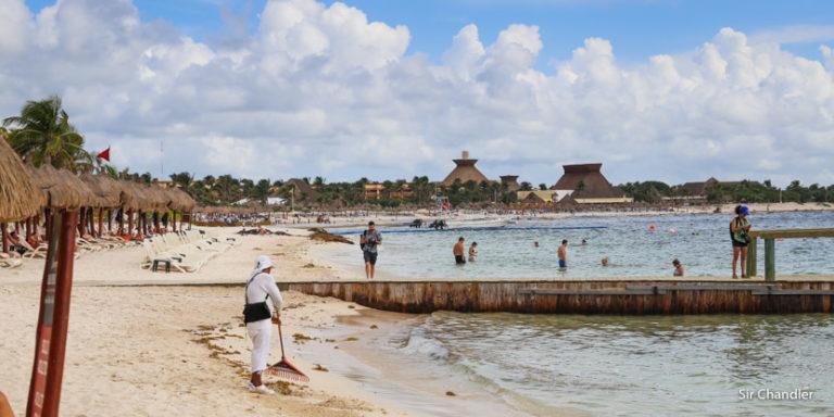 El sargazo que afecta al Caribe y a Miami